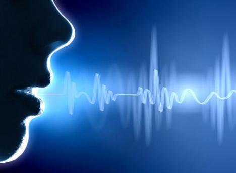高清语音市场将达到79.41亿美元