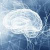 创新科技资讯:人工智能如何改变建筑的未来